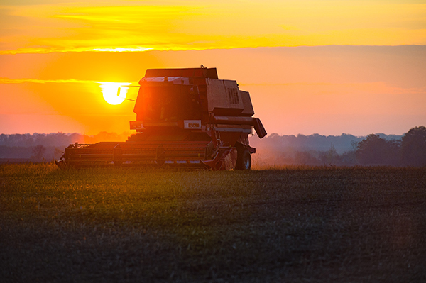 harvester-harvesting-on-the-field-at-sunset-961581542_sm
